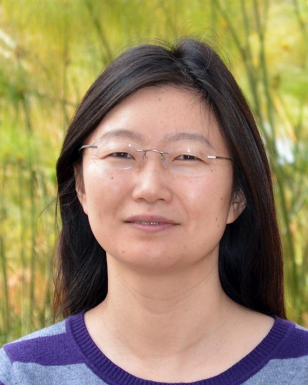 Lingyun Xu