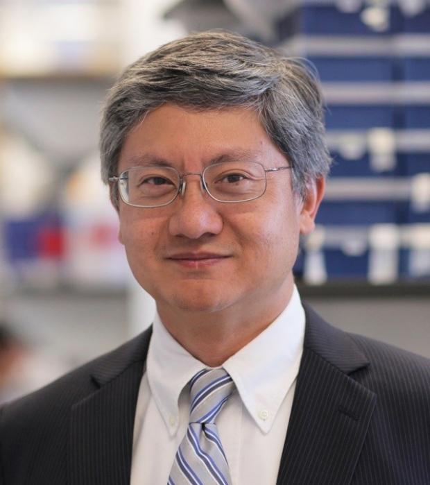 Photo of Michael M Shen, PhD
